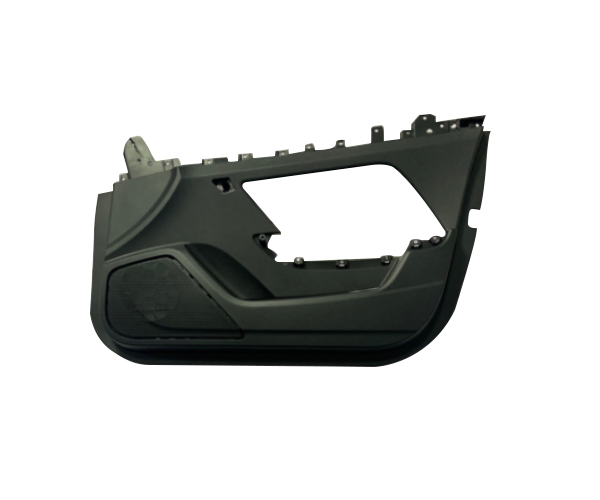 Plastic Auto Door Mould